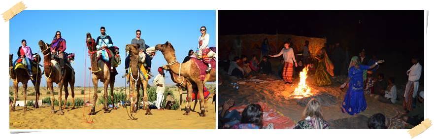 rundresor-indien-kamelsafari1