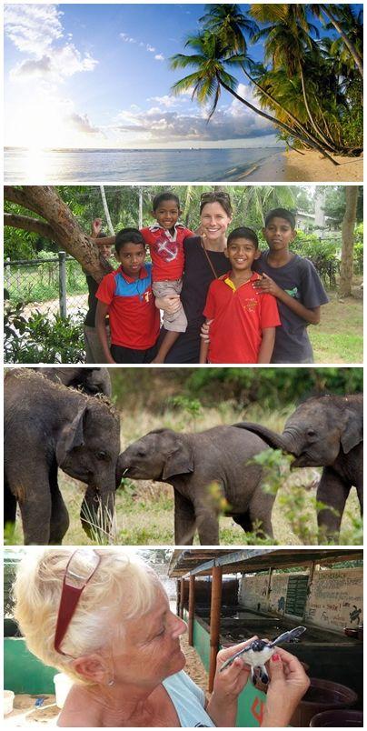 Bilder från volontärresor till Sri Lanka