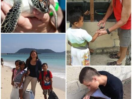 Volontär med sköldpaddor på bali