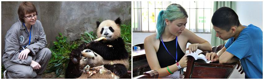 eventyrreise-kina-panda-frivillig-arbeid