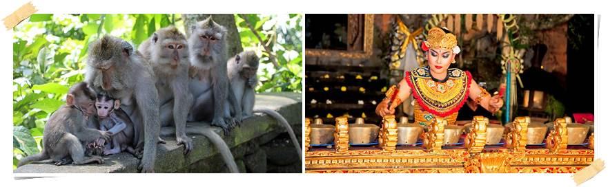 eventyrreise-bali-kultur