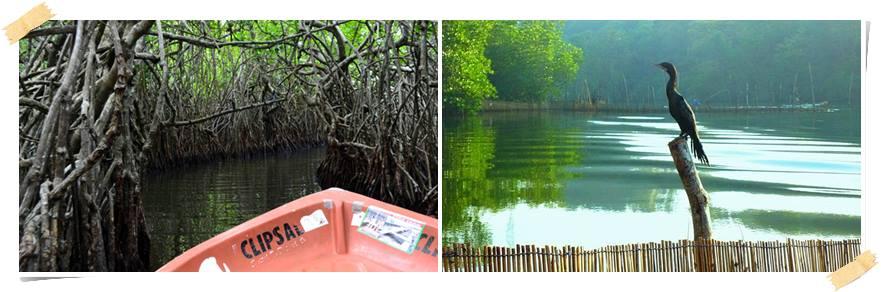 eventyrreiser-srilanka-Madu Ganga