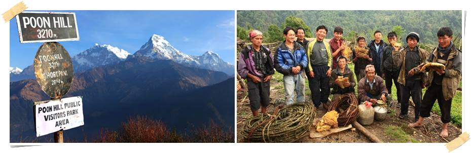 trekking-poon-hill-nepal-volontärarbete