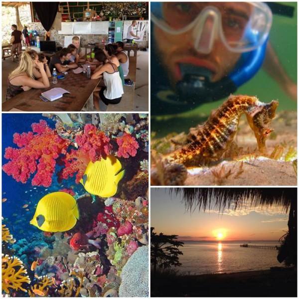 volontär-dykning-kambodja-volontärresor