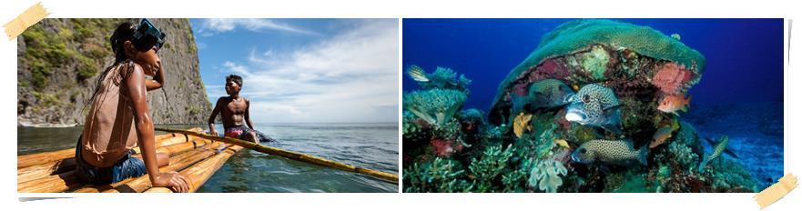 volontärresa-filippinerna-palawan-snorkling