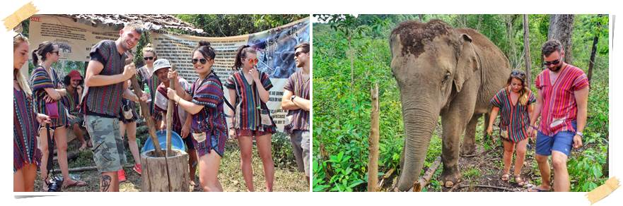 volontärarbete-utomlands-thailand-elefanter