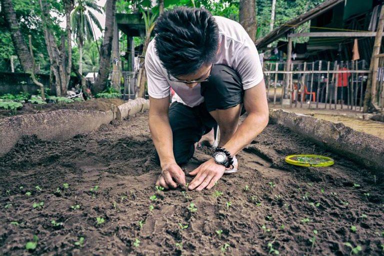 volontär-miljöprojekt-filippinerna