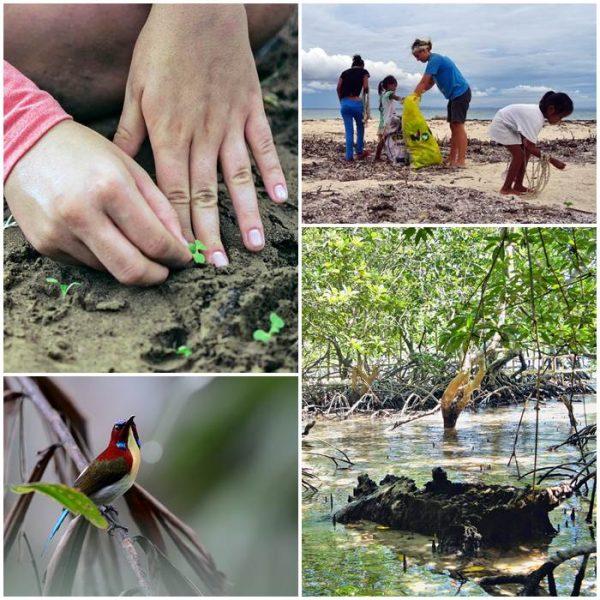 volontärresor-miljöprojekt-filippinerna