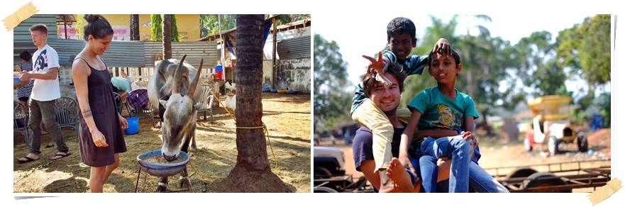volontärresor-till-indien