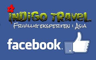 Frivillig i Asia? IndiGo Travel finns på Facebook, gilla oss och håll dig uppdaterad om frivillig arbeid i Asia