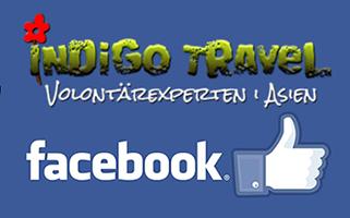 Volontär utomlands? IndiGo Travel finns på Facebook, gilla oss och håll dig uppdaterad om volontärresor i Asien