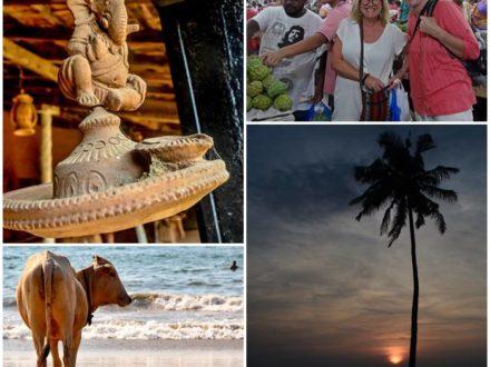 volontararbete-indien-goa-kulturvecka