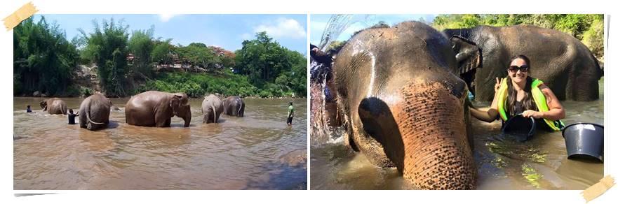 bada-med-elefanter-thailand